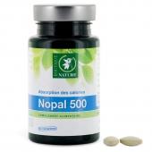 Nopal 500